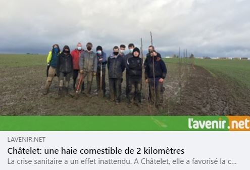 haie-commestible